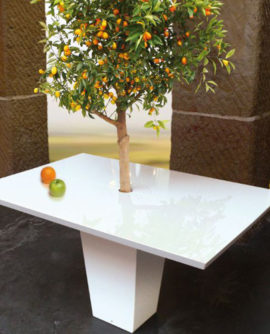 cool_dining_tables_with_integrated_small_trees_by_mezza_style_2